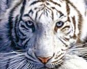 White Tiger - Cross stitch pattern pdf format