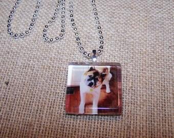 Dog lover, Akita, Dog Breed Pendant, custom glass tile pendant, dog pendant necklace, personalized necklace