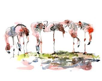 Flamingo watercolor sketch - print from an original watercolor