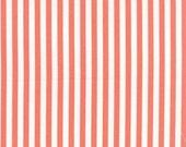 Prairie Coral Stripe by Corey Yoder for Moda