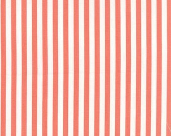 Prairie Coral Stripe by Corey Yoder for Moda