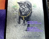 old/senior dog /what love's about ( a spirit's song )small black dog card/  journey cards/sentimental cards/unique empathy condolence cards