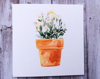 Watercolour White Marguerite Daisy Pot Blank Greeting Card