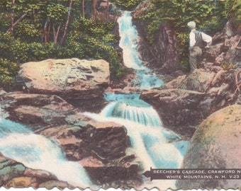 Crawford Notch, White Mountains, New Hampshire, Beecher's Cascade - Vintage Postcard - Unused (A9)