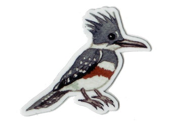 Belted Kingfisher Bird Magnet / Nature Art / Refrigerator Magnet / Office Magnet / Party Favor / Small Gift