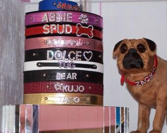 Make a Dog Collar