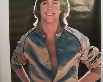 "Original Vintage The Hardy Boys ""Shaun Cassidy"" Poster"