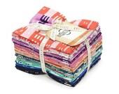 Cotton + Steel - Kim Kight - Penny Arcade Fat Quarter Bundle
