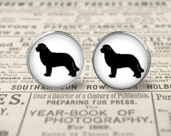 Newfoundland Dog Button Earrings