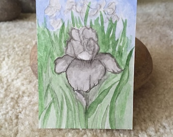 Grey Iris Mini Art Card