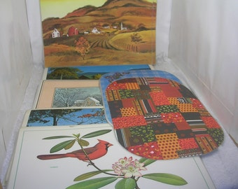 Vintage Lot of 44 Plastic Placemats Missouri Scenes Birds Currier & Ives American Scenery Oval