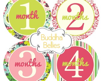 Baby Girl Monthly One Piece Stickers..Modern Floral...Baby Stickers for Monthly Photos...Perfect Baby Shower Gift for New Moms G178