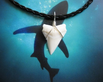 Shark Tooth Necklace, Modern Day White Shark tooth, Braided leather, Silver plated wire wrap