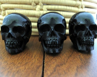 Extra Large skull, top drill ,Buffalo  horn carving, Jewelry making supplies S6958