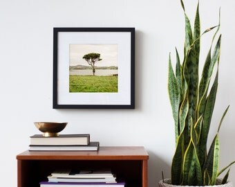 Make any image SQUARE - Choose any photograph in my shop - Square print - Art for square frames - Square photos - Large square art