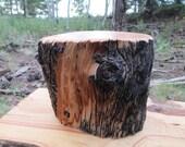 Naturally Weathered Bristlecone Pine Wood Pet Urn/ Memorial Keepsake