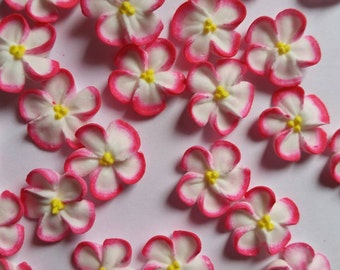 Pink-tipped white royal icing flowers  -- Handmade cake decorations edible cupcake toppers (24 pieces)