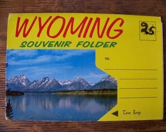 Vintage Wyoming Foldout Postcard.Vintage Souvenir Folder.Jenny Lake.Mama Bear and Cubs.Old Faithful Geyser.Yellowstone National Park.Parks.
