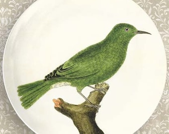 Birds I melamine plate