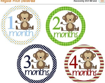 Sale Baby Month Stickers Monkeys Monthly Stickers Baby Monthly Stickers Photo Stickers Baby Milestone Stickers Baby Shower Gift Boy Photo Pr