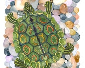 Ringed Map Turtle No.1, Archival Print, you choose size