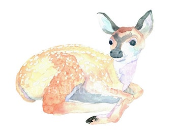 Fawn No. 5, Archival Print of Original Watercolor, you choose size