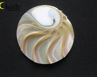 Nautilus Shell round cabochon pendant 40mm IB (A)
