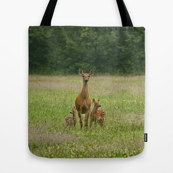 Photography, Deer, Doe with Twin Fawns, Tote Bag, Photo, Baby Animals, Teacher Gift, Fine Art, Woodland Animals, Unique Gift, Everyday Bag