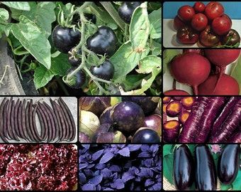 DARK SIDE Heirloom Vegetable Garden Seed Collection
