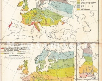 1896 Phenological Map of Europe at Spring of 1884-85 with the common Lilac Antique Map