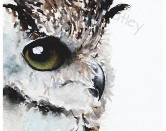 Owl Bird Art Print #39