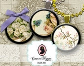 75% OFF SALE VINTAGE Harmony No 01 - 1 inch Circles Digital Collage Sheet Digital Download