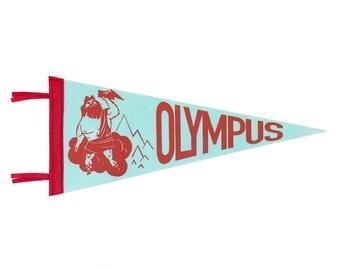 Olympus Pennant - Zeus Greek Mythology Classroom and Nursery Decor - Aqua, Red