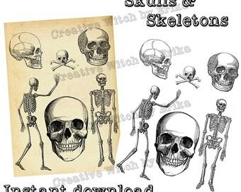 Skulls and skeletons clip art, digital download