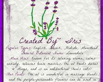 Lavender (8x10JPG), 1 Herbes de Provence Recipe (PDF), 1 Body Butter Recipe (PDF)- Instant Download