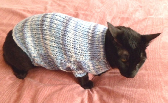 Knitting Pattern For Rat Sweater : CAT SWEATER. KNITTING Pattern.