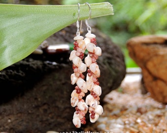 "1 3/4""  Kahelelani & Momi shell earrings from Kauai/ShellsHawaii"