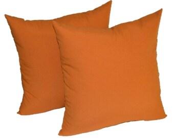 """SET OF 2 ~  20"""" Elegant Harvest Orange Decorative Throw Pillows ~ Indoor / Outdoor Fabric"""