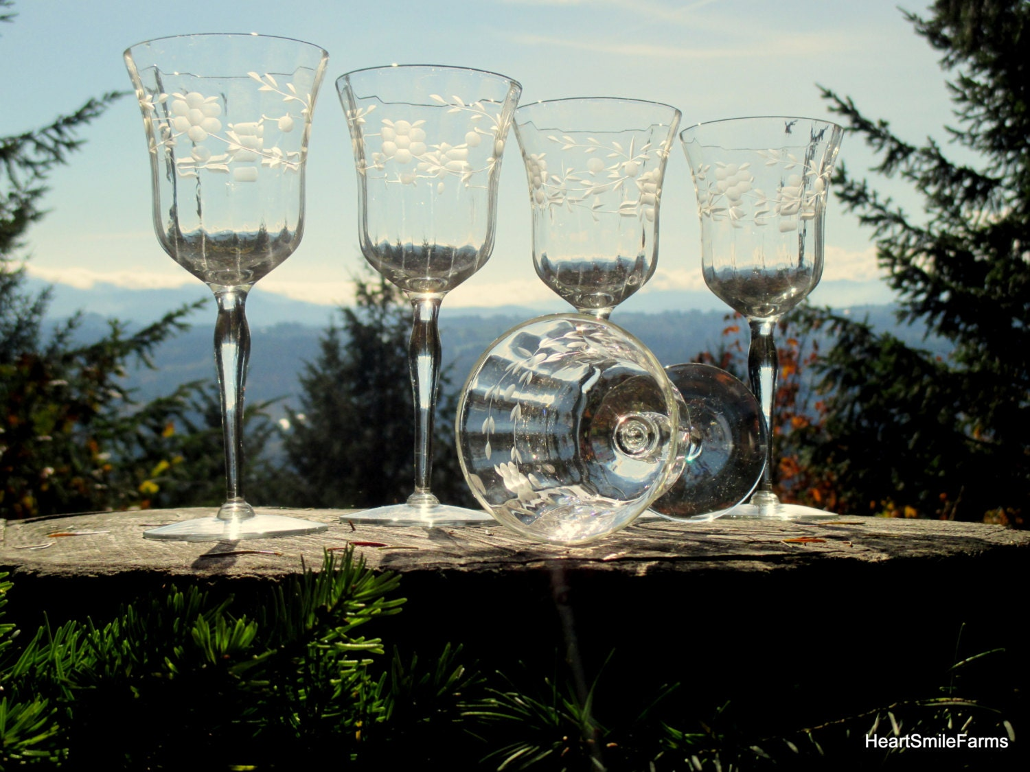 5 floral etched wine glasses fluted wine glasses floral - Fluted wine glasses ...