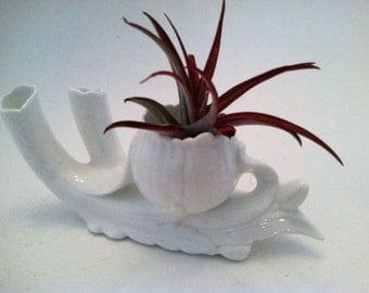 Stunning White Fine Bone China Bud Vase Air Plant Holder Minimalist Boho Home Decor Refined  Porcelain Mid Century