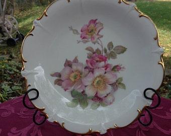 """Vintage Bavaria Schumann Arzber Germany large porcelain plateWild Rose design gold trim 12"""" diam. Golden Crown E&R 1950's"""