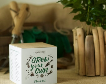 Grow Your Own Aromatic Arabica Coffee Plant Kit