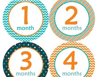 Monthly Stickers Monthly Baby Stickers Baby Month Milestone Stickers Baby Month Stickers Month to Month Bodysuit Stickers Shower Gift 208