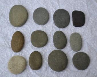 "Flat Beach Rocks (1 - 2"") | 10 Pieces"
