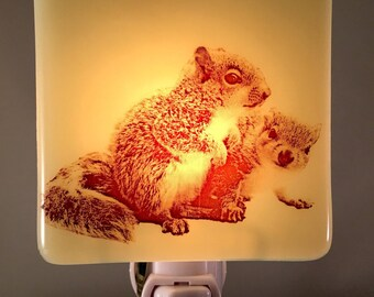 Baby Squirrels Night Light Fused Glass