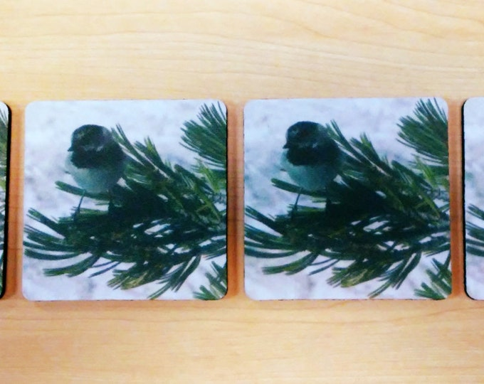 SQUARE Coasters; 4-piece set by Pam's Fab Photos featuring the Nevada Mountain CHICKADEE; Housewarming Gift Idea