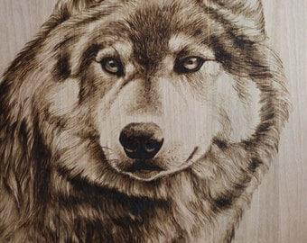 Wolf portrait pyrography/woodburning