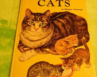 A Child's Book of Cats by Matthew Kalmenoff