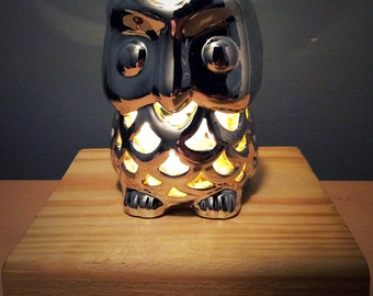 Little owl night light