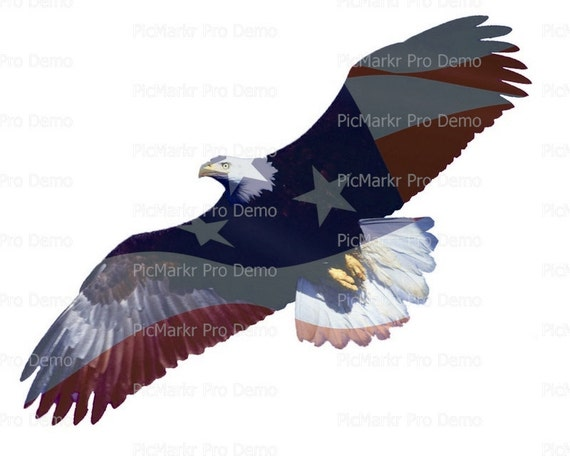 Flying American Bald Eagle - Edible Cake and Cupcake Topper For Birthday's and Parties! - D20896